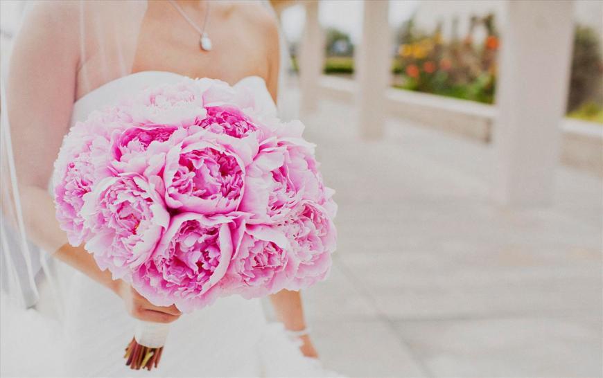 sophia_james_wedding_08252012_0246