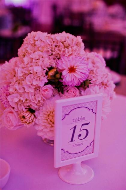 sophia_james_wedding_08252012_0707