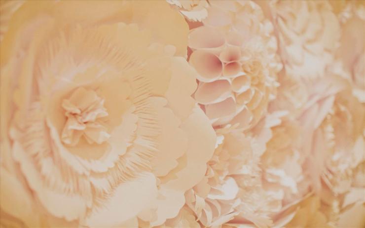 sophia_james_wedding_08252012_0714